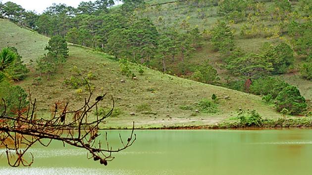 Hồ Dan Kia Suối Vàng Đà Lạt