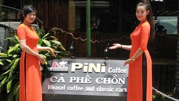 Cafe Chồn Pini Đà Lạt