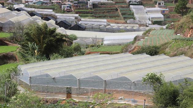Hệ thống tưới tiêu trong nông nghiệp ở đây hoàn toàn tự động, nên người nông dân bớt đi phần nào sự vất vả
